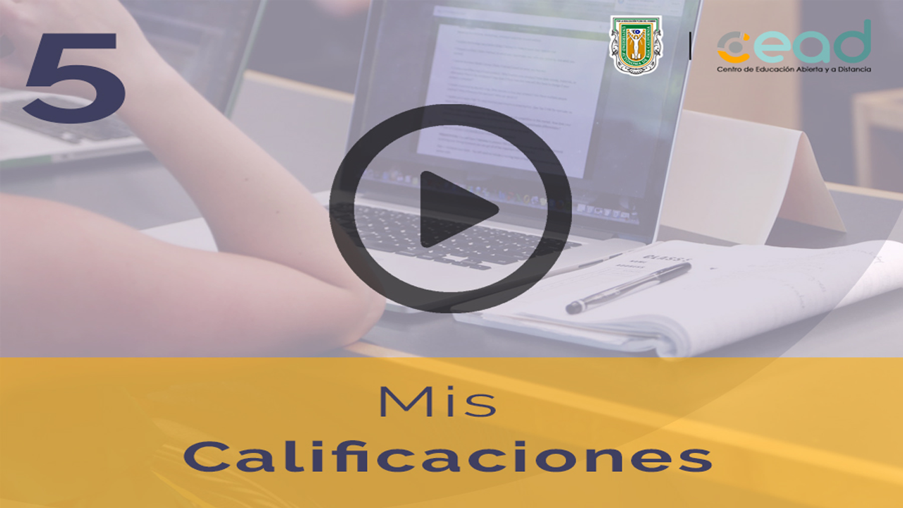 Ir a video [youtube] - 5. Mis calificaciones